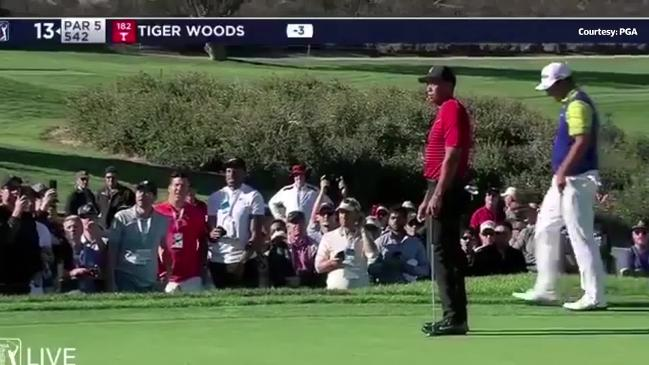 Fan yells out at Tiger Woods, mid-putt